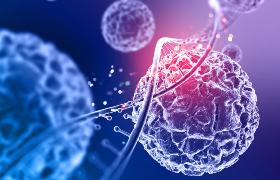 Onderling verschillende tumorcellen kunnen afwijkend reageren op behandeling