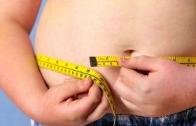 Wereldwijd onderzoek naar gezondheidseffecten overgewicht en obesitas