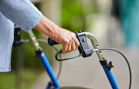 Voeding - en niet zozeer beweging - heeft de grootste impact op botverlies en kracht
