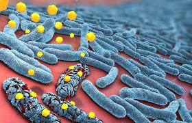 Antibiotica geassocieerd met verhoogd risico op dikkedarmkanker, maar lagere kans op endeldarmkanker