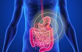 Locatie van primaire tumor beïnvloedt overleving