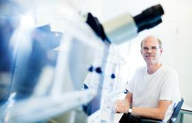 Ook bacterie kan bijdragen aan het ontstaan van kanker