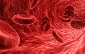Patiënten met triple therapie antistolling lopen groot risico op ernstige bloedingen