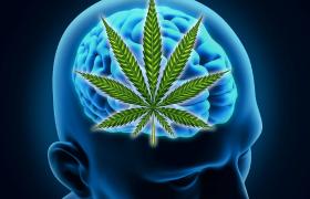 Cannabis en schizofrenie: zowel gevaren als kansen