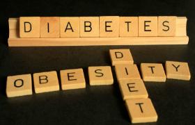 Verstoorde verbinding tussen organellen bij obesitas kan diabetes veroorzaken