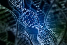 Kunstmatige intelligentie ontdekt nieuwe klasse van mutaties achter autisme