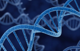 Cancer genes contribute to emergence of congenital anomalies