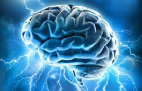 Celebration of the brain during Brain Awareness Week
