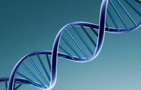 Onafhankelijk van genetisch profiel verlaagt gezonde levensstijl het risico op coronaire hartziekten