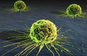 Researchers discover cancer suppressing molecule