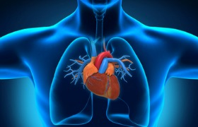 Inclisiran verlaagt LDL-cholesterolgehalte bij verhoogd risico op hart- en vaatziekten