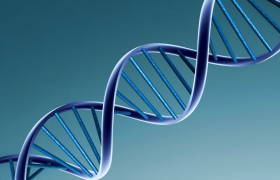 Statin therapy most beneficial for patients with high genetic risk